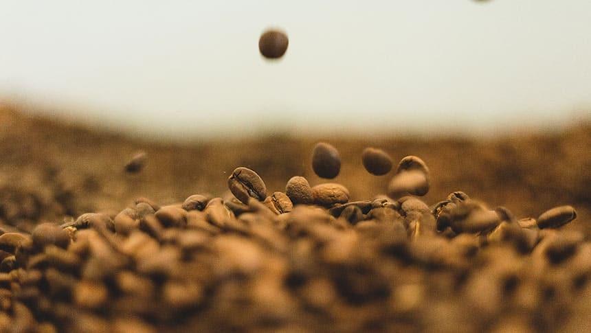 6 formas para elegir los mejores granos de cafe