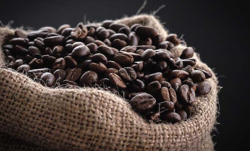 como se procesa el cafe de principio a fin