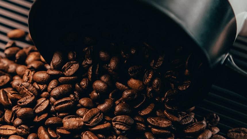 ¿Cómo puedo comprar los mejores granos de café?