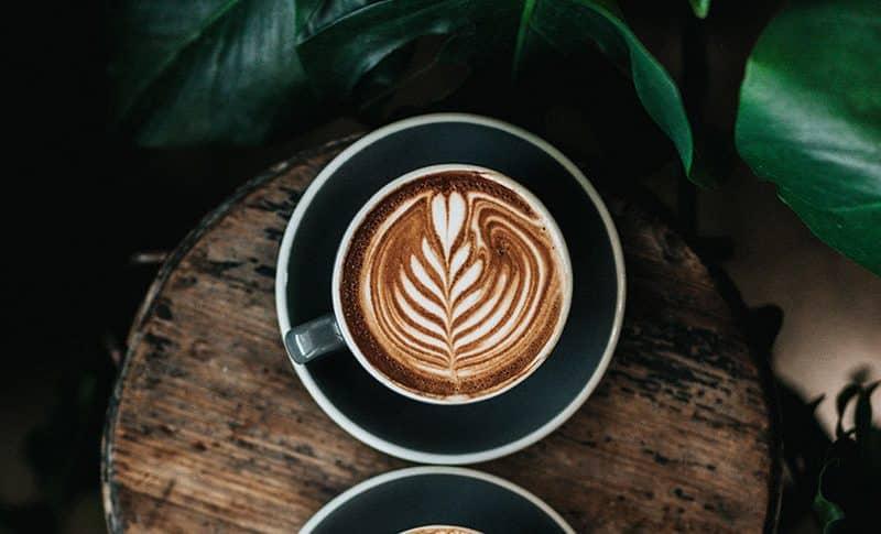 como se hace un cafe de achicoria