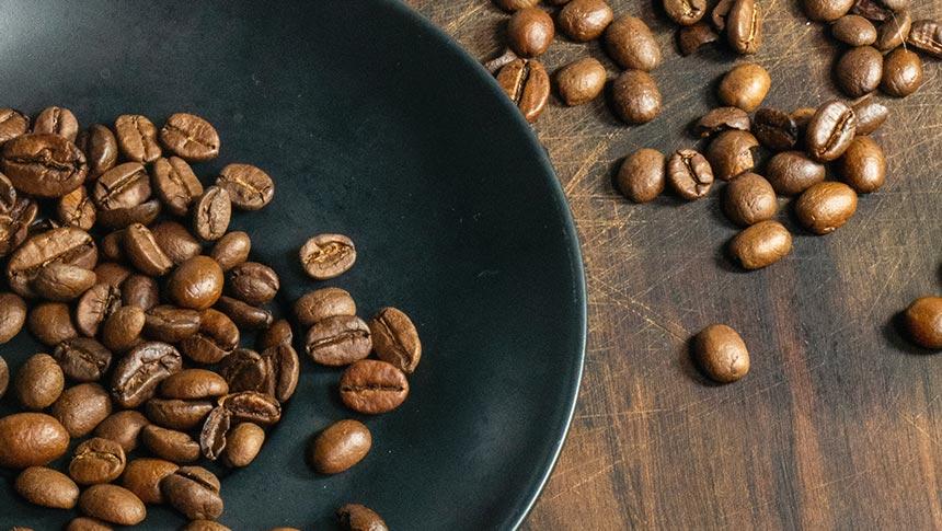 Tostadoras de café: Las mejores